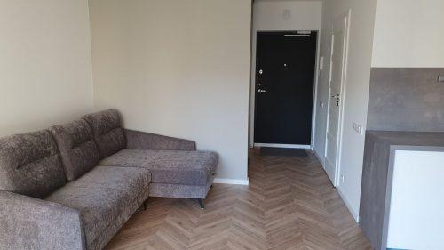 1 kambario buto nuoma Vilnius, Šnipiškės, M. Katkaus g.