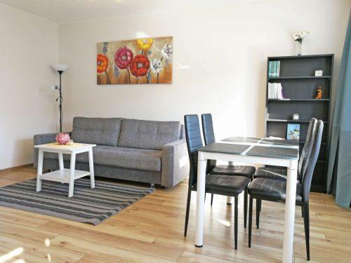 Trumpalaikė erdvaus 2 kambarių buto nuoma Trakų g. – pats miesto centras