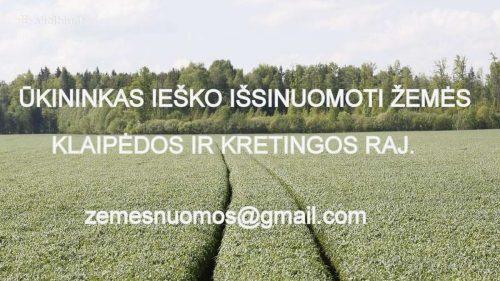Žemės sklypo nuoma Klaipėdos r. sav.,